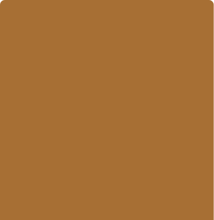 realsense color-Cognac