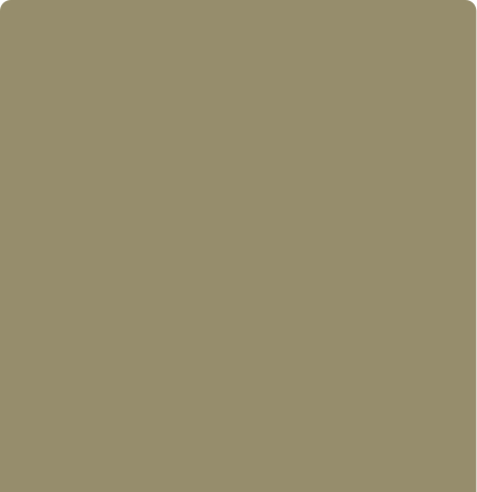 realsense color-Salbei