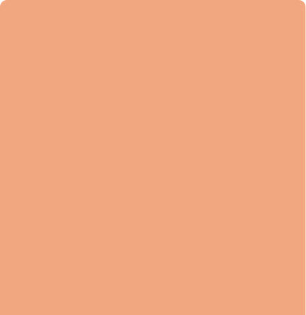 synnect-color-Blush
