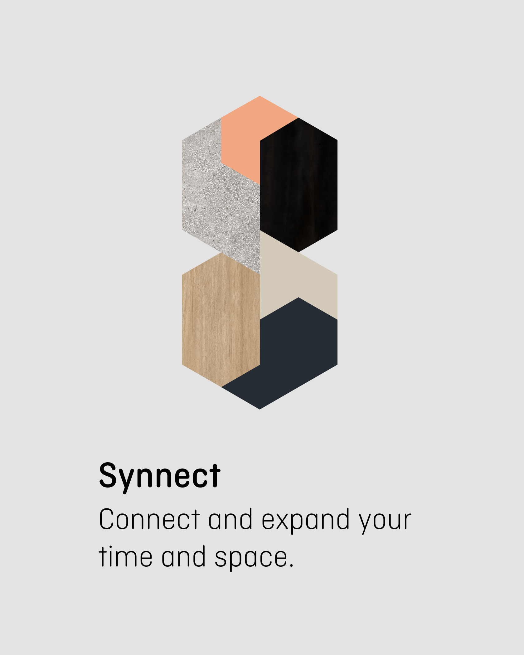 synnect-title